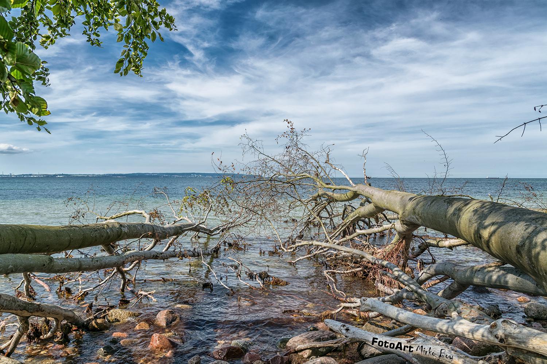 Ostseeküste - Fototouren