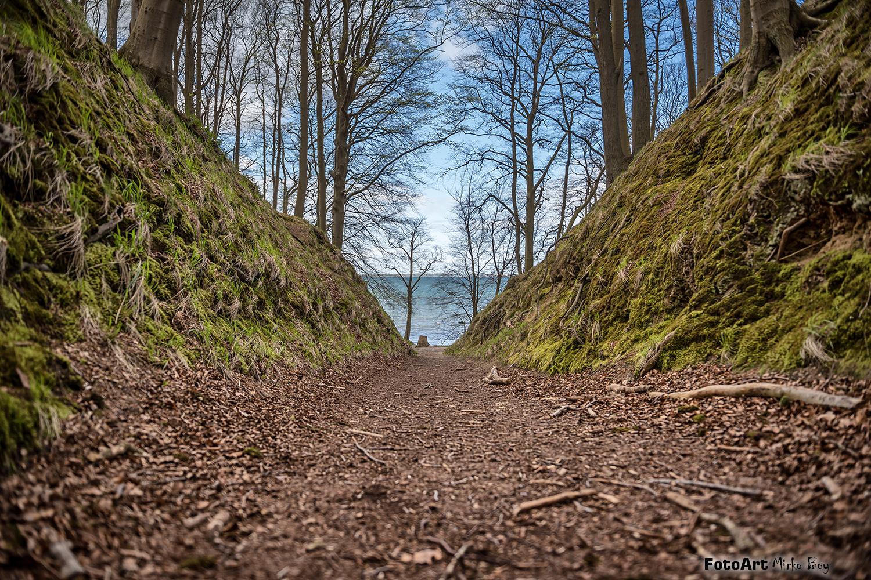 Granitzwald - Fototouren