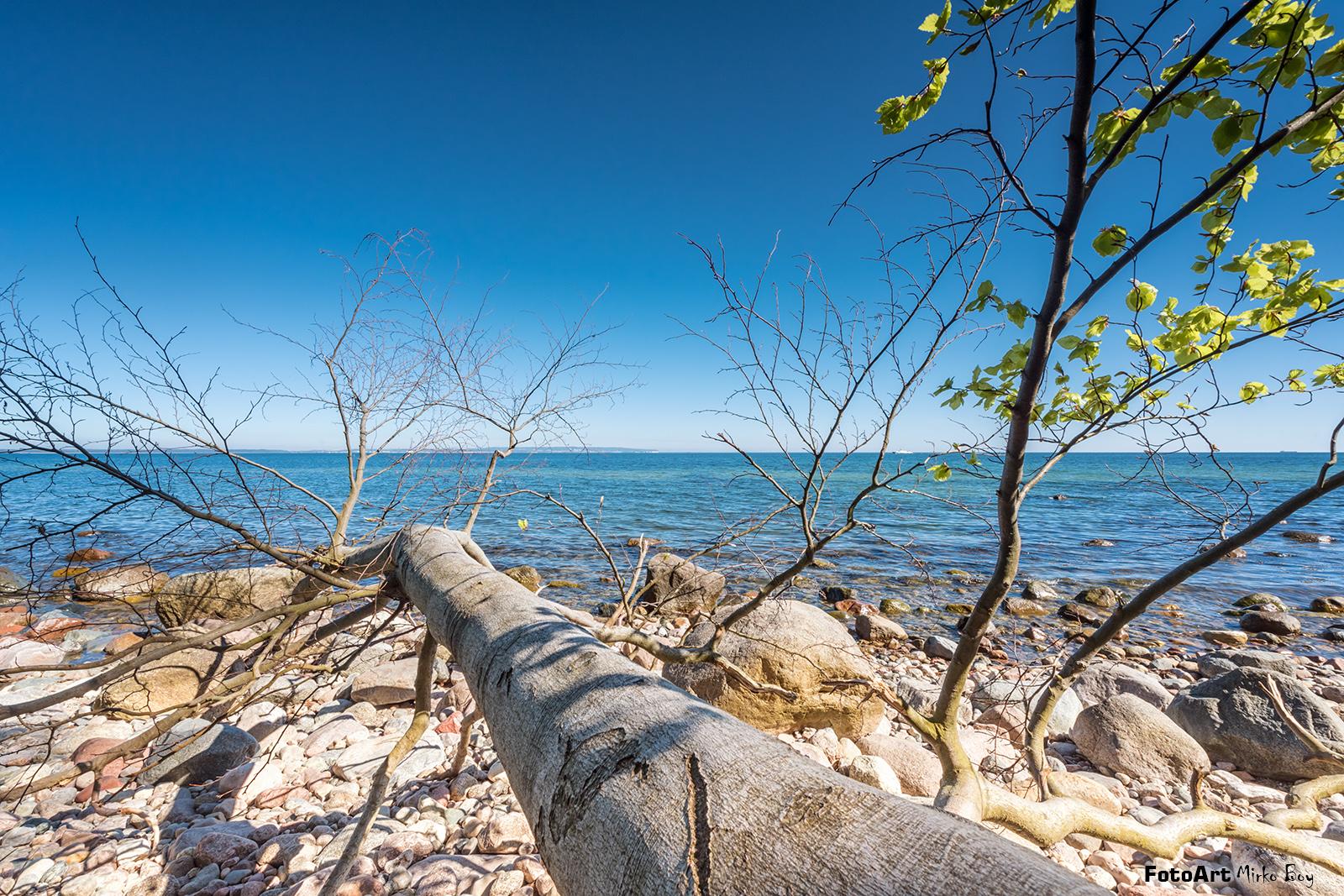 Natur Küste Rügen - Fototouren